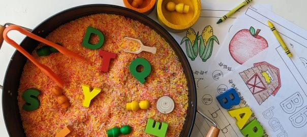 rice sensory play, learn through play, alphabet sensory play, colour sorting, fine motor development